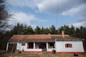 Czizovszki tanya 027